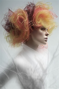 NAHA Master Hairstylist  2010 finalists